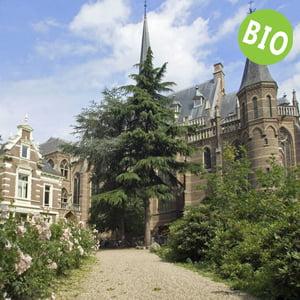 Voor teambuilding Nijmegen kunt u biologisch lunchen in de Elegast Ubbergen