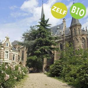 teambuildings locaties in Gelderland - Nijmegen - op basis van zelfverzorging