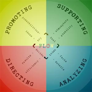 De werkwijze met teambuilding, teamtraining en teamontwikkeling