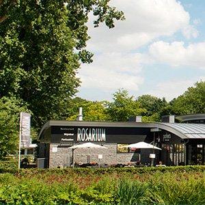 Rosarium Amstelpark Amsterdam perfect voor teambuilding buiten (en binnen)